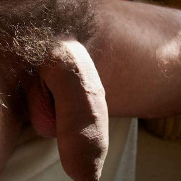 Cock flaccid dick big thick soft